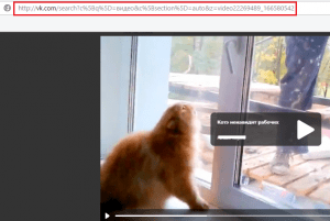 Ссылка на видео VK.