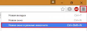Инкогнито в Google Chrome.