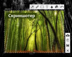 Сделать скриншот с помощью Скриншотер.